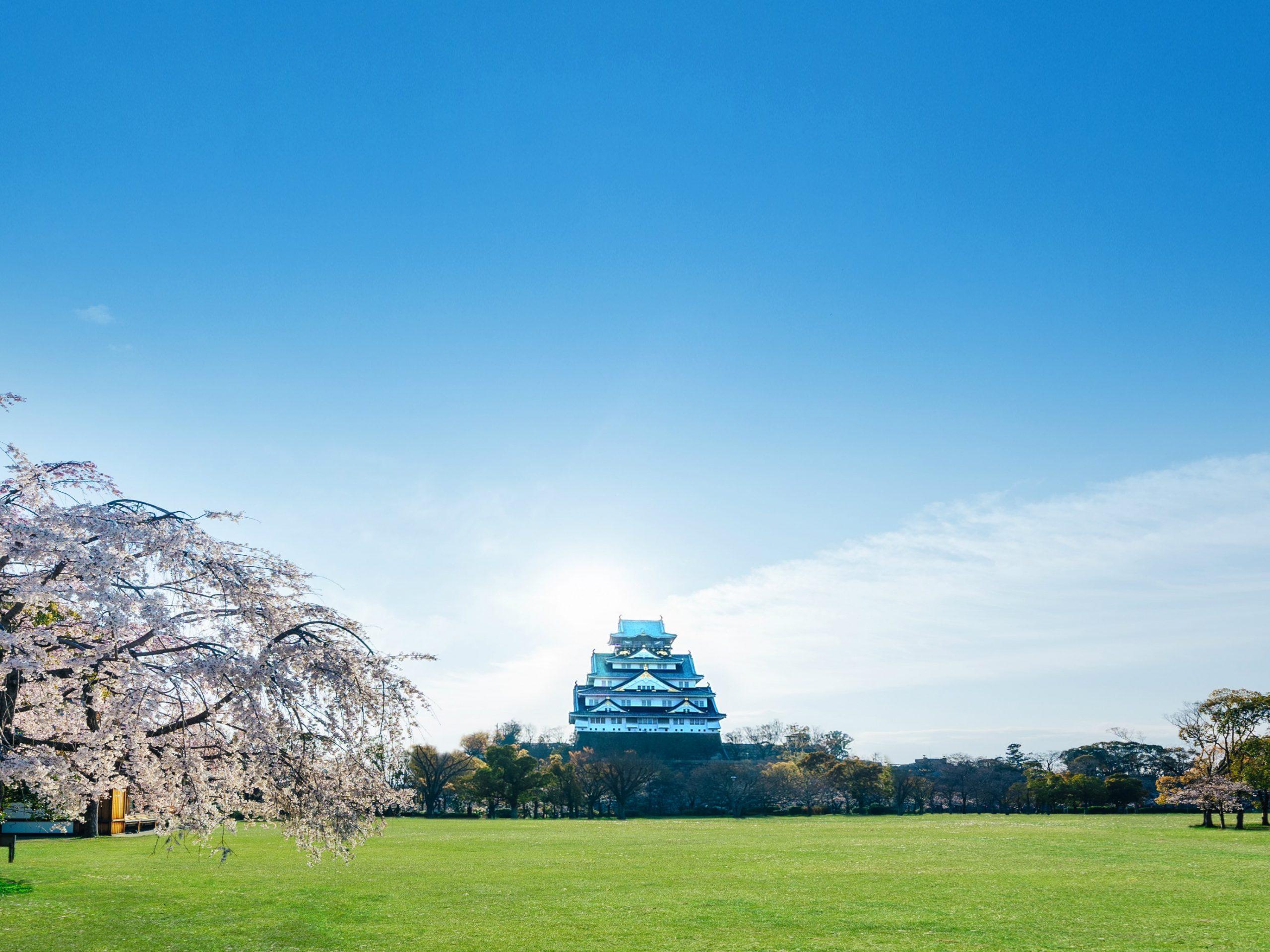 2万坪のスケールで広がる歴史ある庭園一望